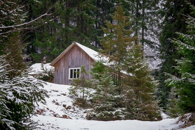 Maison en forêt d'hiver Photo Premium
