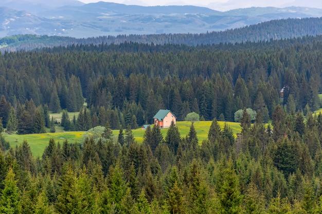 Une maison isolée est située dans les montagnes au milieu de la forêt. Photo Premium