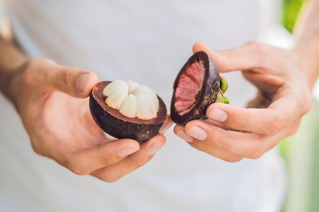 Mangoustan Sur Main De Fermier Tenir Des Fruits Tropicaux Photo Premium