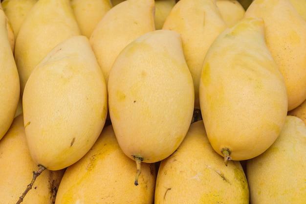 Mangue jaune, mangue barracuda Photo Premium