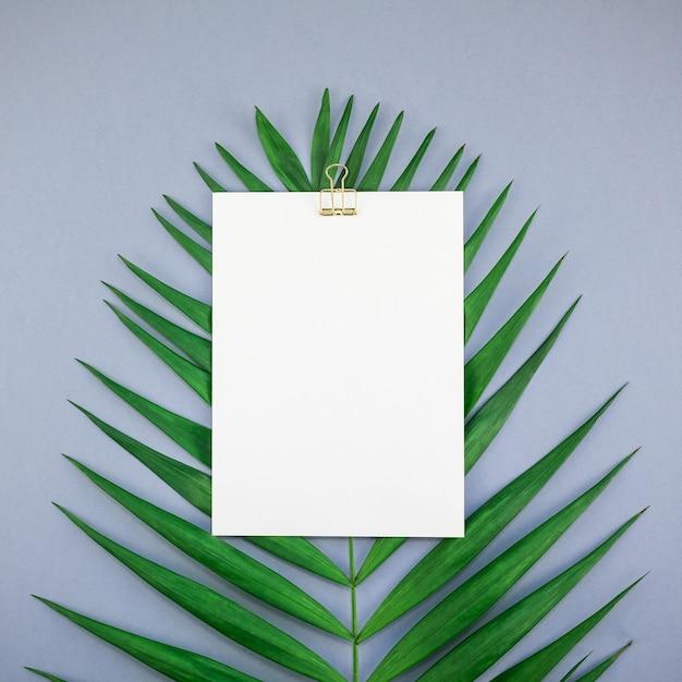Maquette vierge blanche carte postale tropicales feuilles de palmier Photo Premium