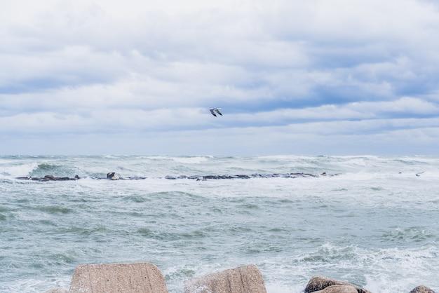 Marche maritime touchée par les vagues d'une tempête marine et du vent fort. Photo Premium