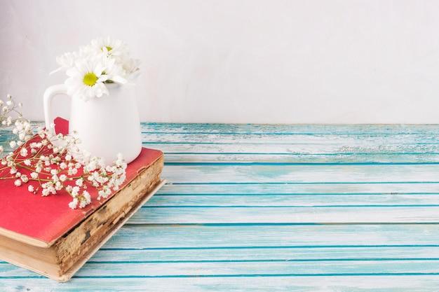 Marguerite fleurs en pot blanc sur le livre Photo gratuit