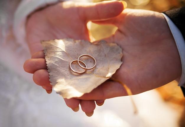 Les mariés tiennent une feuille avec des anneaux Photo Premium