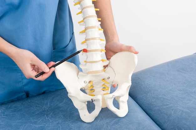 Médecin avec un stylo montrant une hernie dans un squelette à un patient. Photo Premium