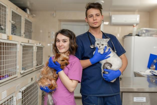 Médecins Vétérinaires En Uniforme Tiennent Chat Et Chien Sur Fond De Clinique Vétérinaire De L'hôpital Photo Premium