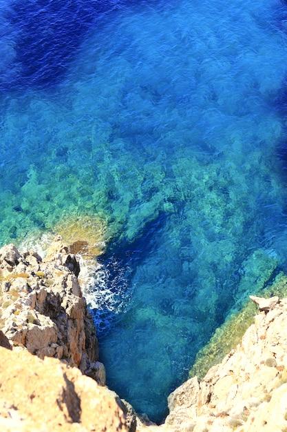 Méditerranée barbaria cap formentera Photo Premium