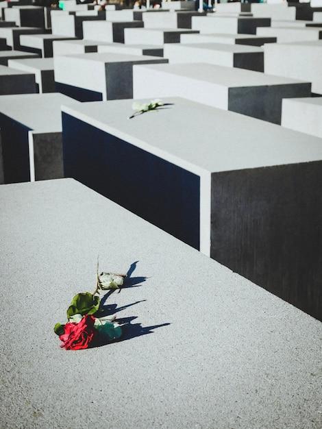 Mémoriaux juifs des victimes de la guerre mondiale. jour de la victoire, le 9 mai. jour du souvenir, cimetière Photo Premium