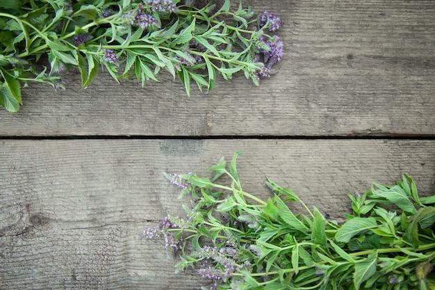 Menthe poivrée floraison d'herbes sur un fond en bois. herbes medicinales. style de pays rural vintage. pose à plat. Photo Premium