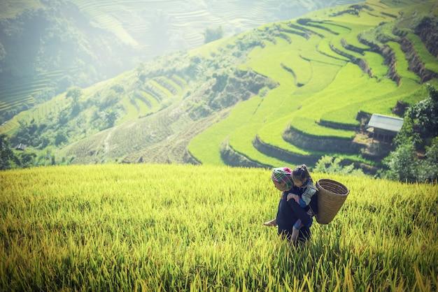 Mère et fille dans les rizières en terrasse, tu le lao cai, vietnam Photo Premium
