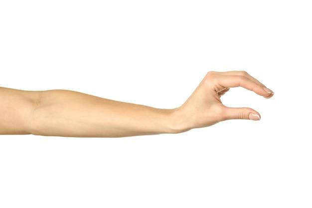 Mesurer Un Objet Invisible. Main De Femme Avec Manucure Française Faisant Des Gestes Isolé Sur Mur Blanc. Partie De Série Photo Premium