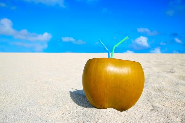 Miami south beach 2 pailles de noix de coco en floride Photo Premium