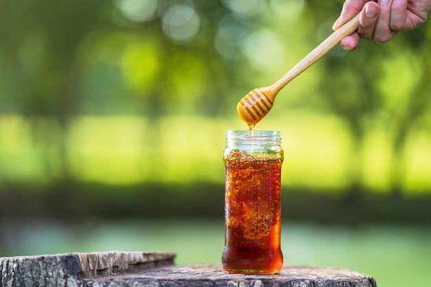 Miel dégoulinant de louche de miel sur vert naturel Photo Premium