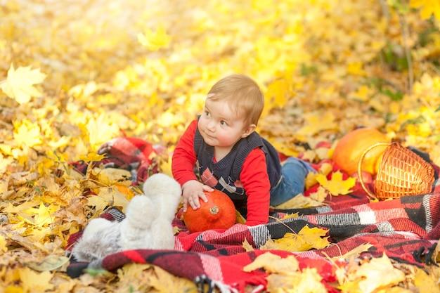 Mignon petit garçon sur une couverture à la recherche de suite Photo gratuit