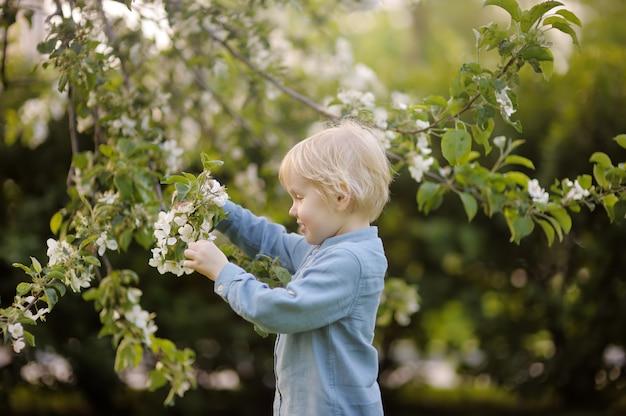 Mignon petit garçon marchant dans le printemps fleuri du parc. Photo Premium