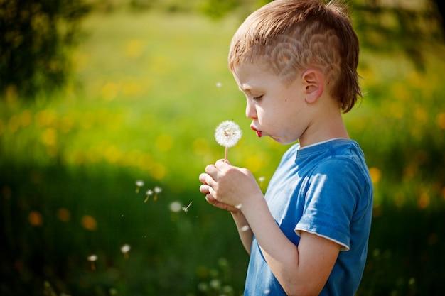 Mignon petit garçon soufflant pissenlit dans le jardin de printemps. Photo Premium