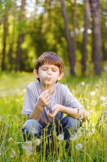 Mignon petit garçon souffle pissenlit. Photo Premium