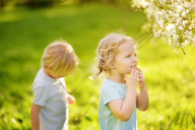 Mignons Petits Enfants Jouant Ensemble Dans Un Parc Ensoleillé Photo Premium