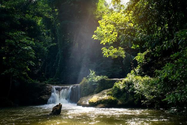 Mini cascade et rayons de soleil couchant Photo Premium
