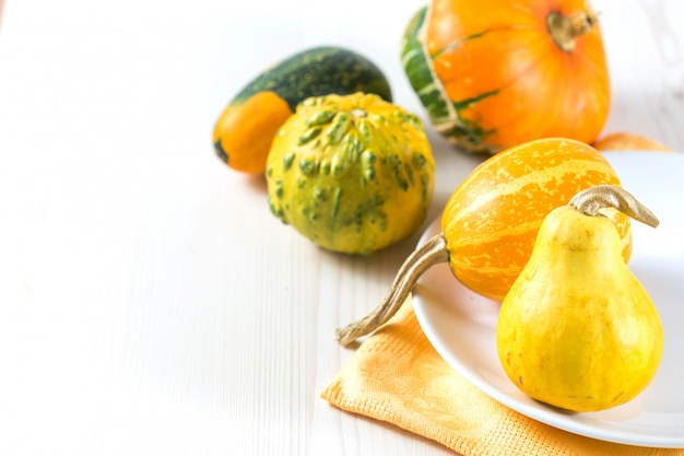 Mini citrouilles Photo Premium