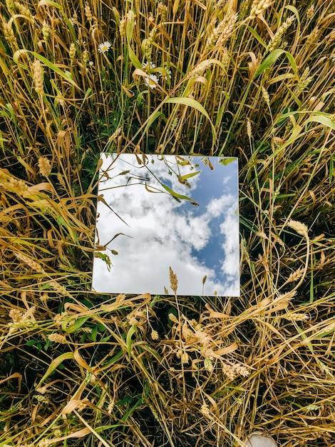 Miroir Carré En épis De Blé Avec Ciel Bleu Réfléchi Et Nuages Blancs Photo Premium