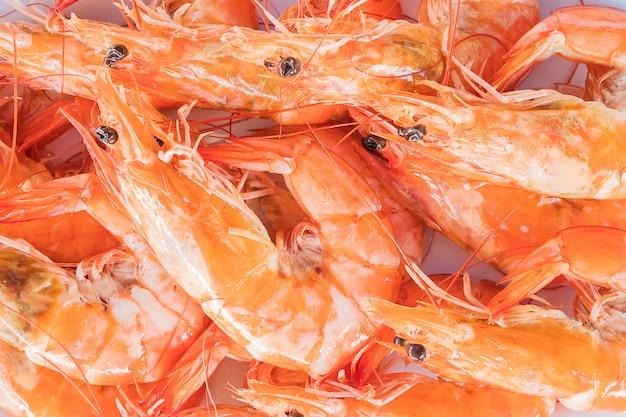 Mise au point sélective de crevettes à la vapeur dans une assiette blanche Photo gratuit