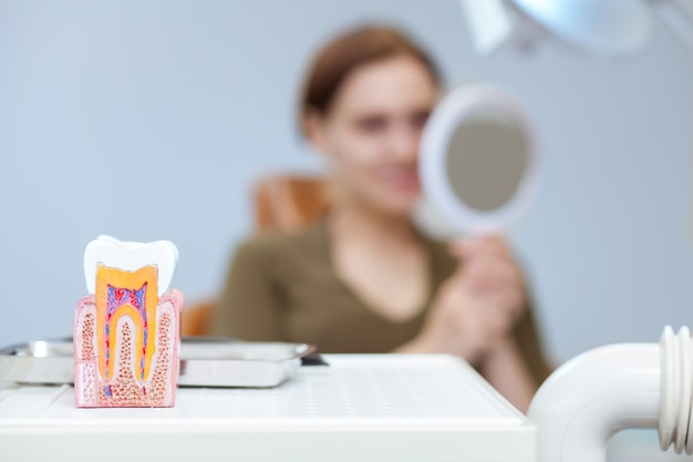 Mise au point sélective sur le modèle dentaire, femme examinant ses dents dans le miroir à l'arrière-plan Photo Premium