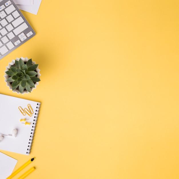 Mise à Plat Du Bureau Avec Succulentes Et Cahier Photo gratuit