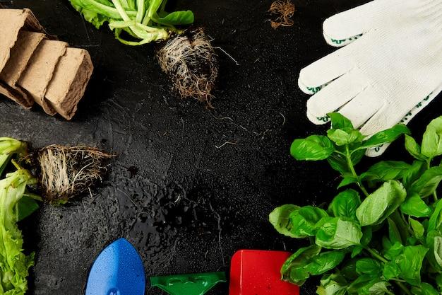 Mise à Plat D'outils De Jardinage, Basilic, Pot De Fleurs écologique, Sol Sur Fond Noir. Photo Premium