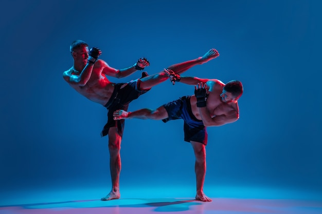 Mma. Deux Combattants Professionnels Poinçonnage Ou Boxe Isolé Sur Mur Bleu En Néon Photo gratuit