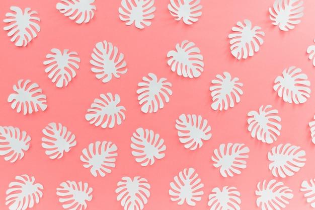 Modèle de forêt tropicale avec des plantes blanches monstera feuilles sur fond rose Photo Premium