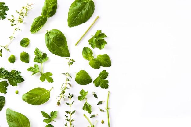 Modèle d'herbes aromatiques fraîches vert isolé sur blanc Photo Premium