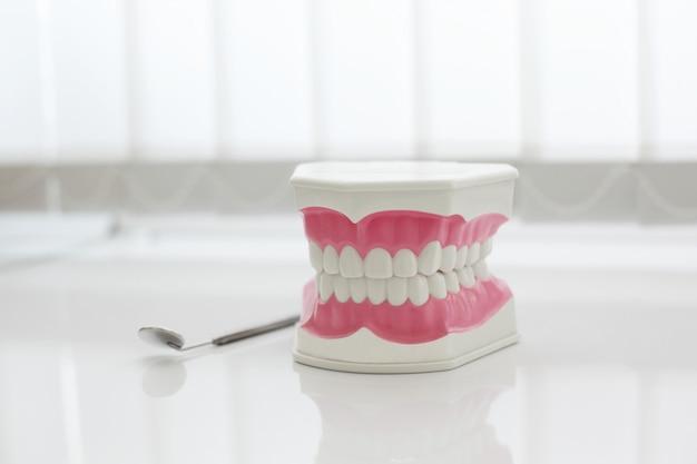 Modèle De Mâchoire Artificielle Sur La Table Dans Le Cabinet Dentaire Photo Premium