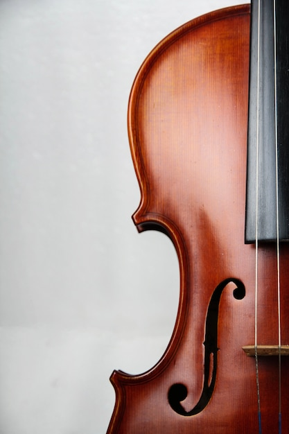 La moitié de la face avant du violon Photo Premium