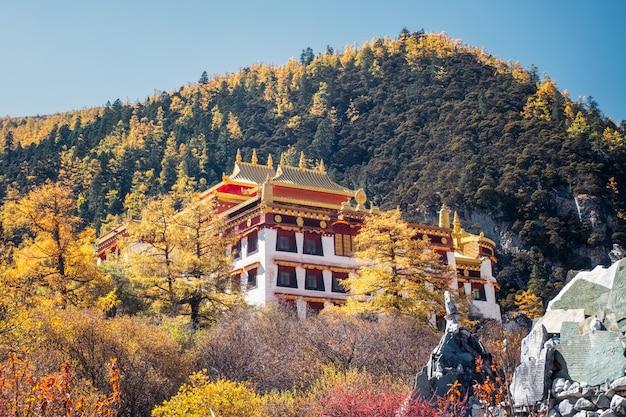 Monastère de chong gu qui brille dans la forêt de pins en automne dans la réserve naturelle de yading Photo Premium