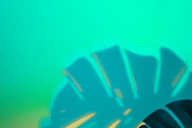 Monstera laisse ombre sur fond turquoise Photo gratuit