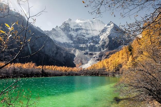 Montagne xiannairi sur le lac émeraude avec forêt de pins dorés en automne Photo Premium