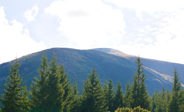 Montagnes contre le ciel bleu Photo Premium
