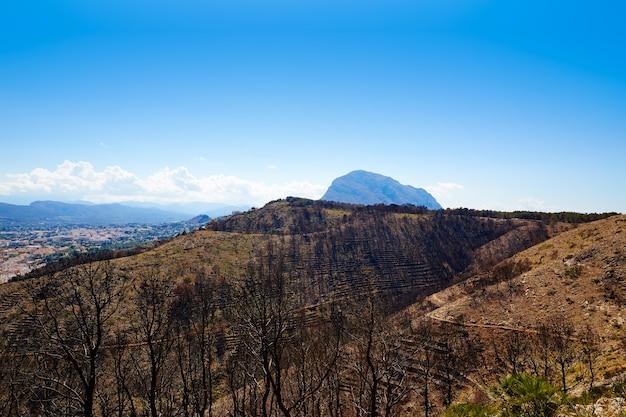 Montgo javea xabia a brûlé des arbres à feu à alicante Photo Premium