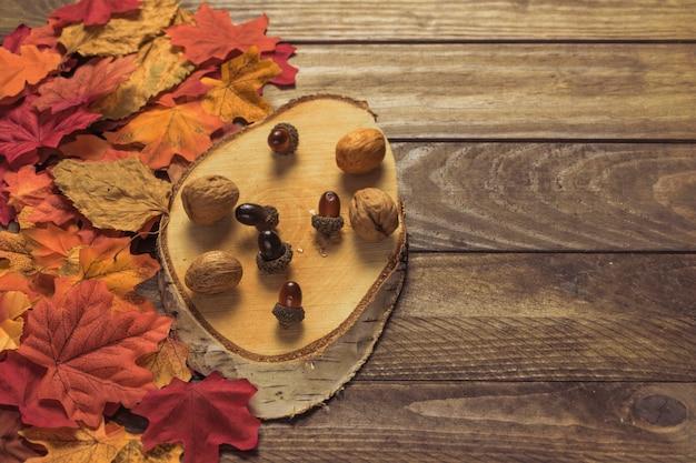 Morceau de bois avec des noix près des feuilles Photo gratuit