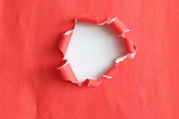 Morceaux De Texture De Papier Déchiré Et Espace De Copie Pour La Conception De Votre Travail. Photo Premium