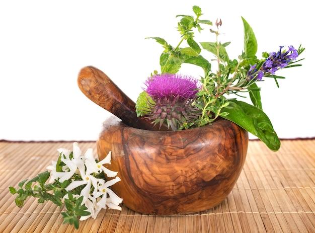 Mortier et plantes Photo Premium