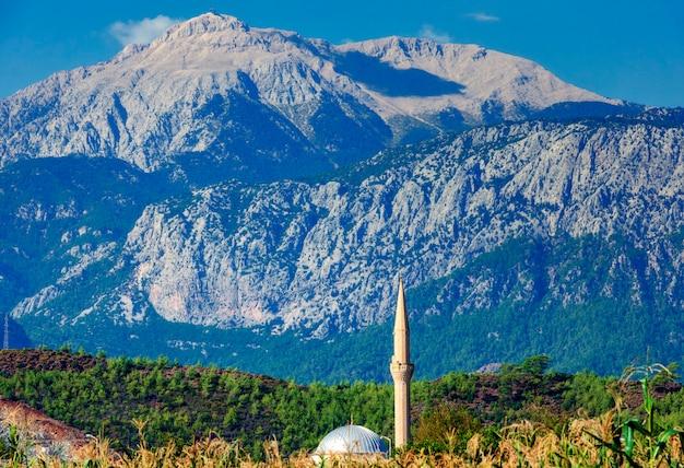 Mosquée dans un champ de maïs sur fond de montagnes. turquie, kirish. Photo Premium