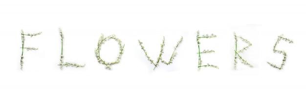 Mot de fleurs de muguet isolé sur blanc Photo Premium