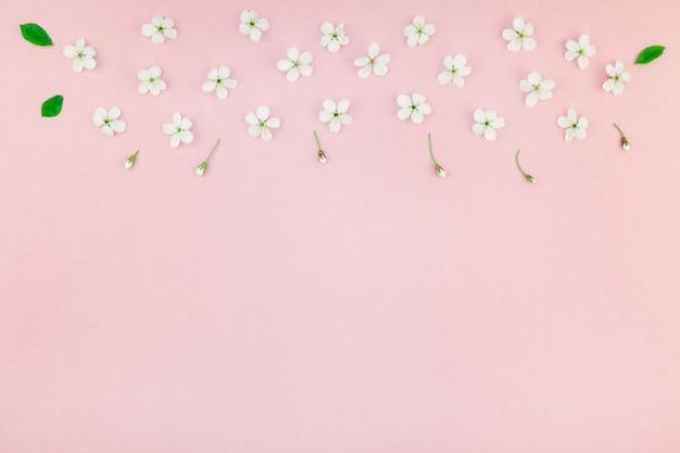 Motif de fleurs en fleurs de cerisier de printemps blanc Photo Premium
