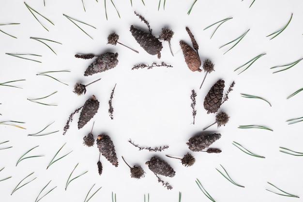 Motif floral fabriqué à partir de cônes de conifères et d'aiguilles sur fond blanc Photo Premium