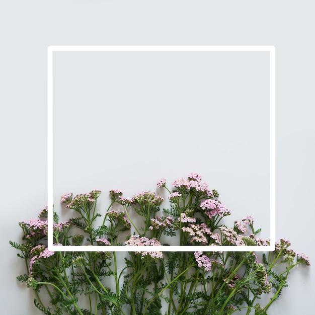 Motif floral de fleurs violettes et roses avec cadre blanc sur fond gris. lay plat. vue d'en-haut. Photo Premium