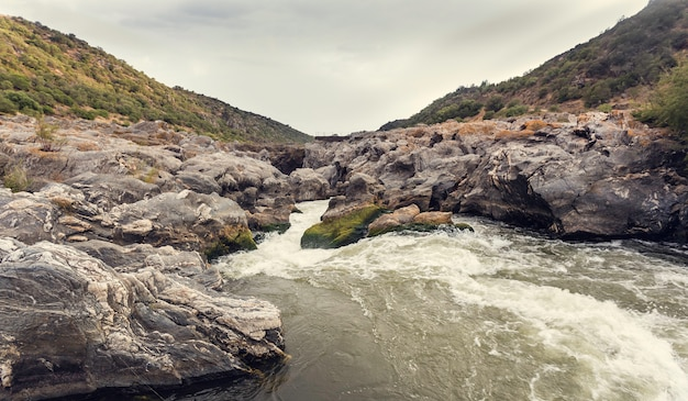 Mousse dans les rapides de la rivière avec rocher recouvert de mousse verte et jaune Photo Premium