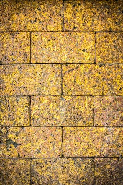 Mur en pierre de latérite Photo Premium
