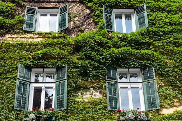 Les murs de la maison italienne sont recouverts de raisins sauvages. Photo Premium